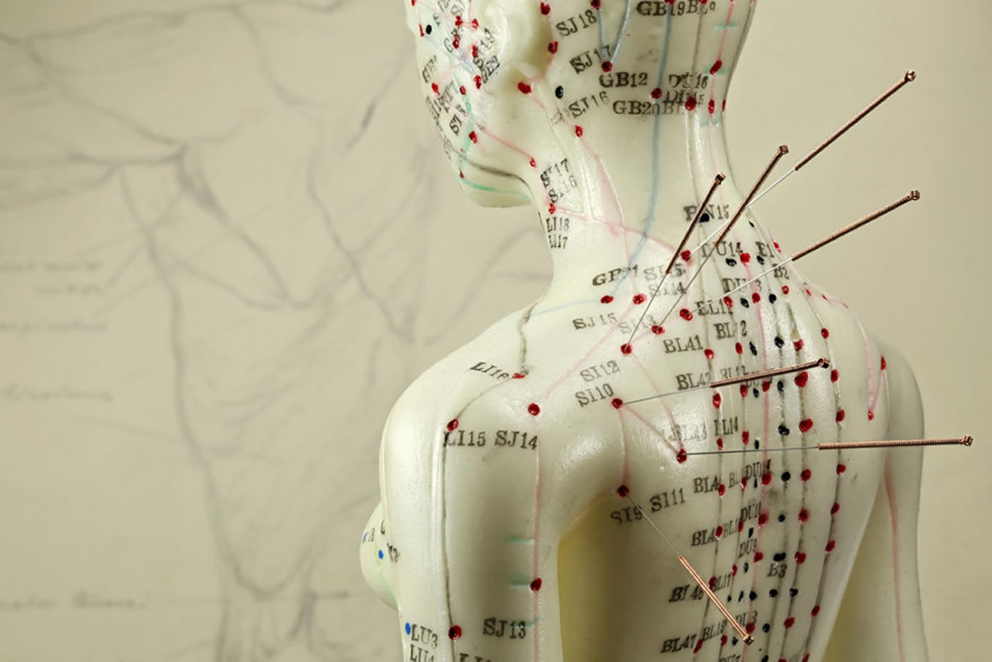 acupuncture-great-neck-ny-2-2